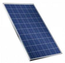 Zonnepaneel Trina Solar TSM-pd05 275 Wp